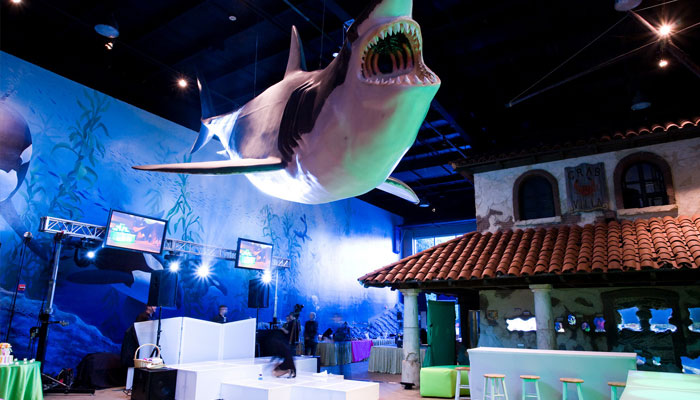 Shark Room Photo