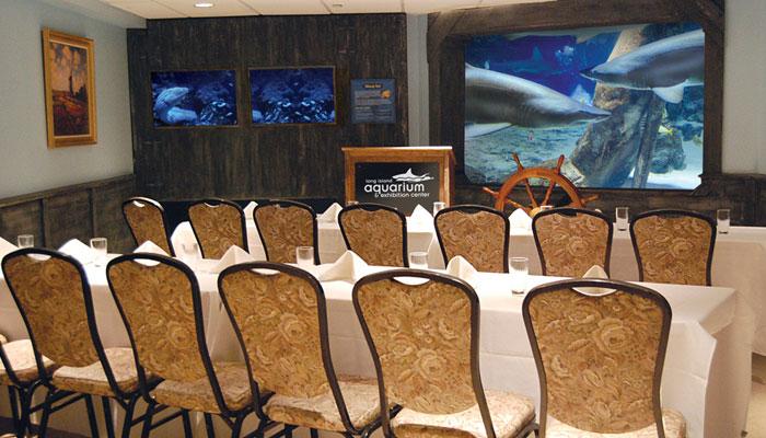 Shark Tunnel Room Photo