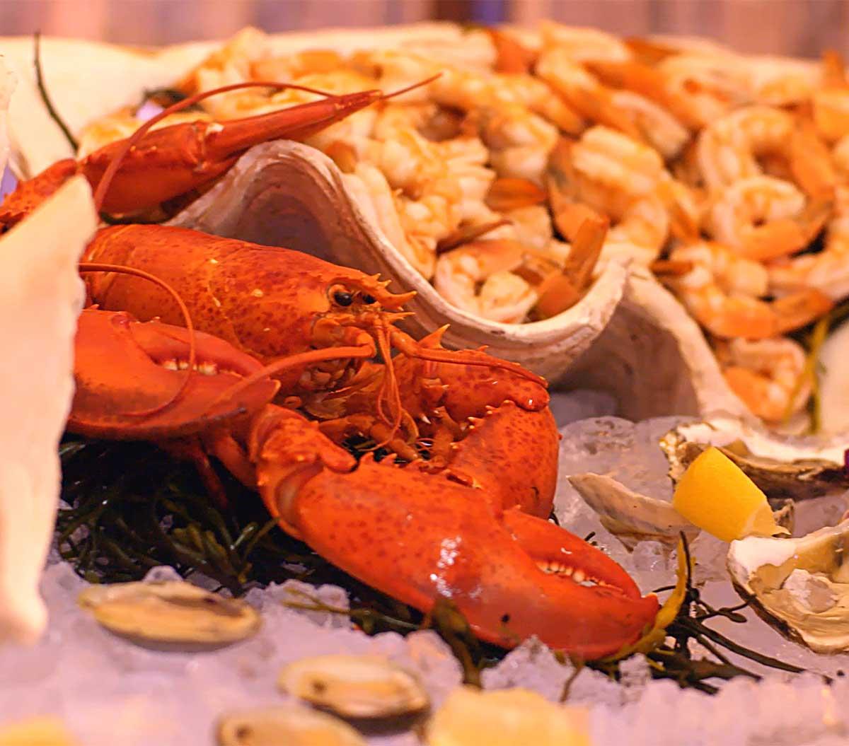 AB&E Cuisine Photo